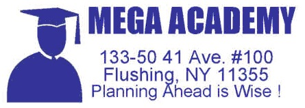 Mega Academy
